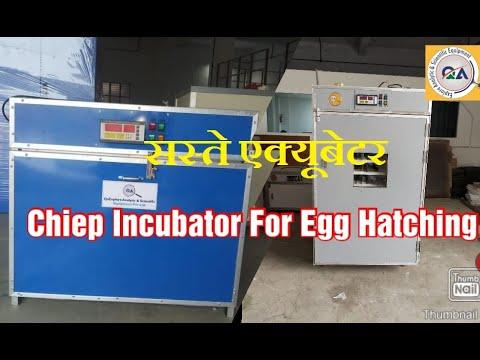 30000 Egg Incubator