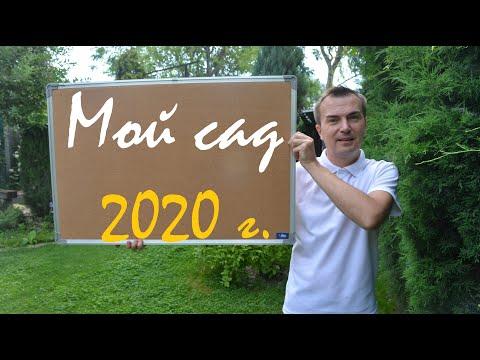 7. Мой сад - 2020 год.