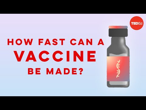 Exactly How Long Does It Take to Develop a New Vaccine?