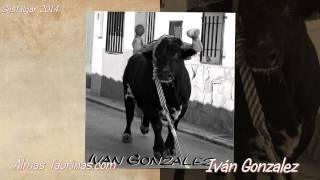preview picture of video 'GESTALGAR febrero 2014 imagenes de Iván Gonzalez.'