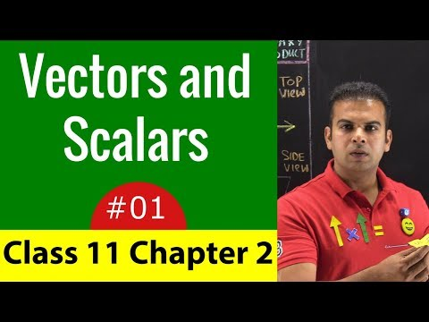 Physics Class 11 Chapter 2 - Lecture 1 | Vector, Scalar Simple