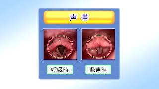 100016けいれん性発声障害2010年03月収録
