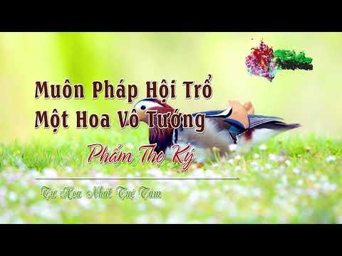 06. Phẩm Thọ Ký