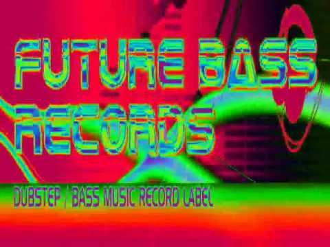 Dubstep...Heatseeker...Rogue...Future Bass Records