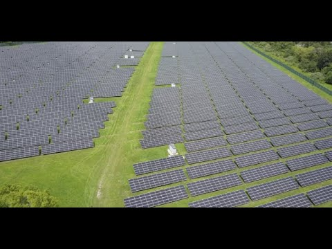 Large companies see payoffs in sustainability