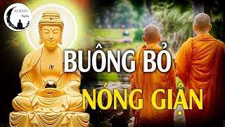 Phật Dạy Không Tức Giận - Học Cách Buông Bỏ Nóng Giận Để Đời Bớt Khổ - Audio Pháp Hay.