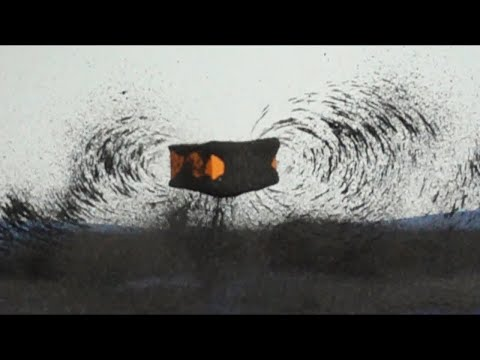 Capturing Magnetic Fields in Slow Motion