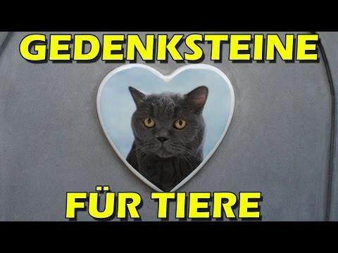 """""""GEDENKSTEINE (Grabsteine) FÜR TIERE"""" -Vorstellung"""