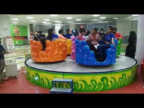 Amusement Dolphin Ride