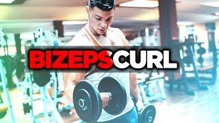 Bizeps Curls - richtig ausführen / BIZEPCURL MIT DER KURZHANTEL   SMARTGAINS