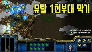 스타 리마스터 유즈맵│뮤탈 천부대 막기 클리어!!! 2인용!!