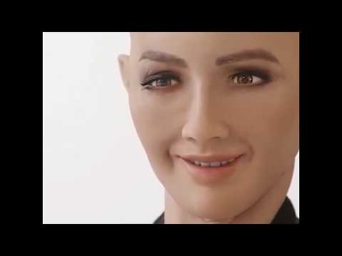 Every Robot is a Sex Robot if You're Ambitious