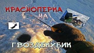 Ловля красноперки по первому льду
