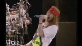 Guns and Roses Criollo abraham28282
