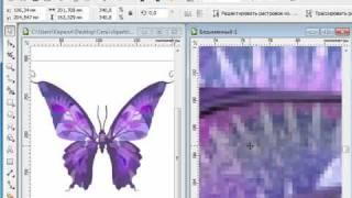 CorelDRAW X5 для начинающих.  Векторная графика (1.1)