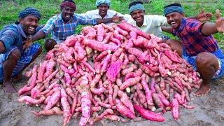 FARM FRESH SWEET POTATOES Harvesting & Cooking | Sakkaravalli Kilangu Kuzhi Paniyaram Recipe Cooking