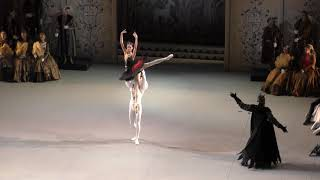 15/09/18 Andrea Lassakova debut in Swan Lake Act II Odile Entree and PDD