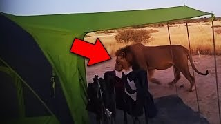 14 Scariest Camping Encounters Caught on Tape
