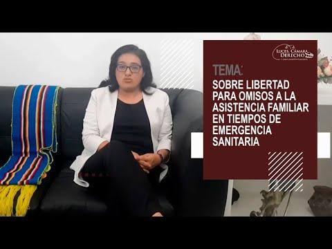 LA LIBERTAD PARA OMISOS A LA ASISTENCIA FAMILIAR EN TIEMPOS DE EMERGENCIA - Luces Cámara Derecho 169