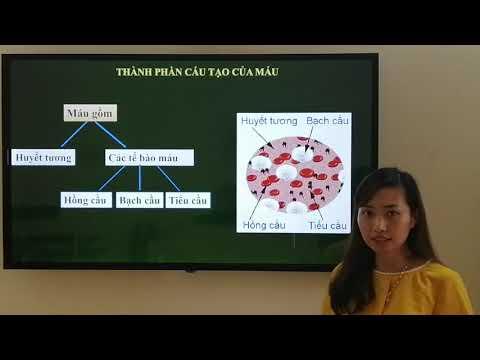 iết 1: Ôn tập sinh học 8 ( Cô Nhung THCS TT CAO THUONG )