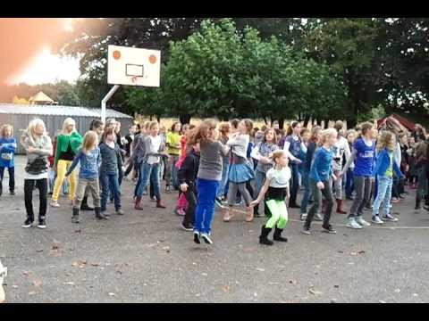Flashmob 't Stekske Langenboom