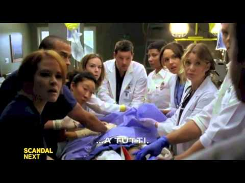 Grey's Anatomy 9.14 (Preview)