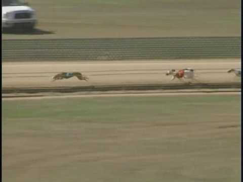 Race 70