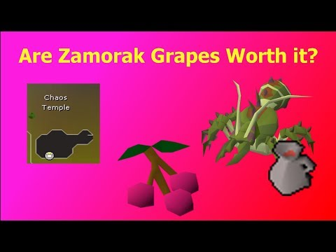 OSRS] Are Zamorak Grapes Efficient for Ironman? - Ivendrakeo - thtip com
