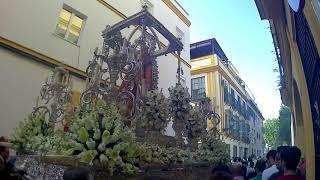 BM Carmen (Salteras) - Azul Y Plata - Traslado Extraordinario Hiniesta Gloriosa Coronada