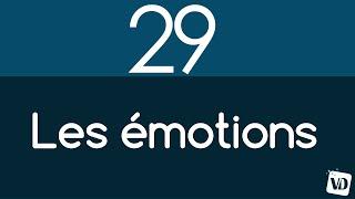 Vignette de Les 2 grandes catégories d'émotions