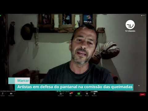 Artistas se reúnem em defesa do Pantanal na comissão das queimadas - 29/10/20