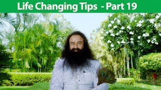 Life Changing Tips Part 19 | Saint Dr MSG Insan