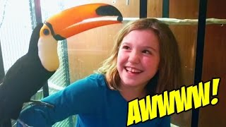 Kids Feed Toucan Blueberries! (THE CUTEST EVER!!!)