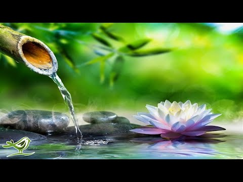 Relaxing Piano Music: Sleep Music, Water Sounds, Relaxing Music, Meditation Music ★47�