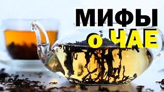 Галилео.  Мифы о чае