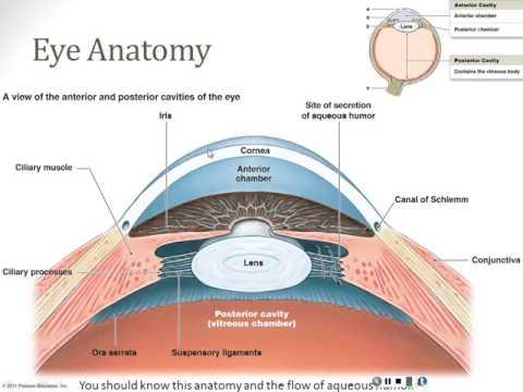 Utilizarea laserelor în oftalmologie