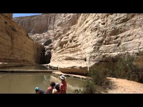 Israel, National Park Ein Avdat. Part 3.