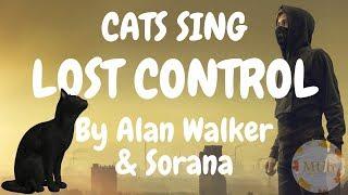 Cats Sing Lost Control By Alan Walker Sorana