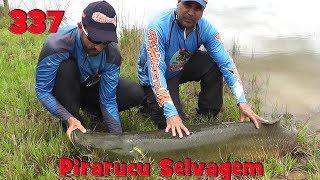 Programa Fishingtur na Tv 337 - Lago Natural