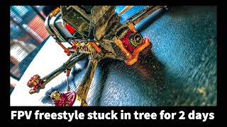 FPV FREESTYLE Stuck In Tree For 2 Days