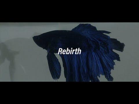「Rebirth」