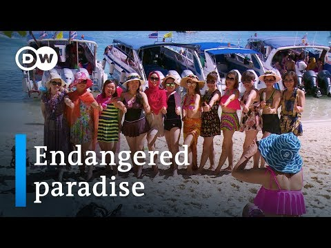 Thailand and the fallout from mass tourism | DW Documentary - (2019)