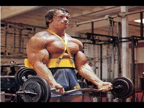Tous les ensembles des exercices pour les muscles