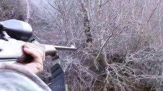 Adrenalin Dolu Domuz Avı Wild Boar Hunting
