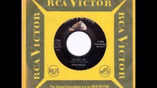 Ed Bruce - Flight 303 RCA '60