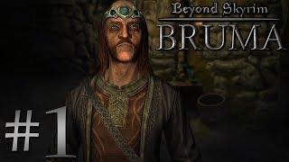 "Dark Streams: Beyond Skyrim: Bruma [01] - ""Davian's Journey"""
