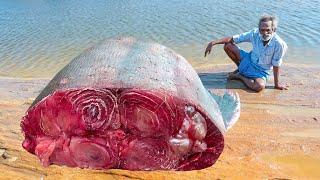 200 KG !!! FISH Kadaai Soru prepared by my Daddy Arumugam / Village food factory