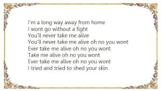 Chris Cornell - Take Me Alive Lyrics
