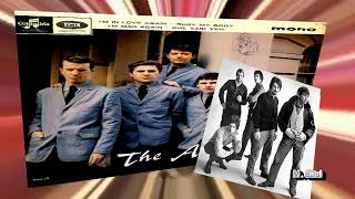 The Animals Eric Burdon I'm mad again
