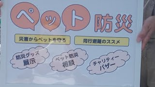 【ほぼライブ配信】ペット防災について「びわ湖わんにゃんマルシェ」